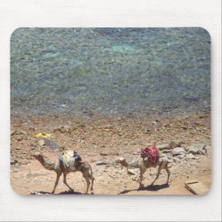 Camels Walking By the Blue Hole Mouse Pad
