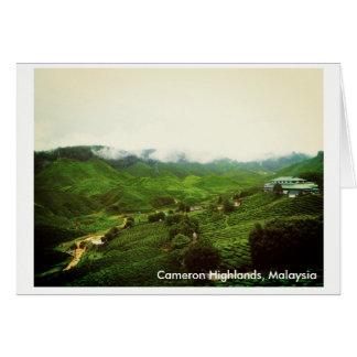 Cameron Highlands, Malaysia scenery Card