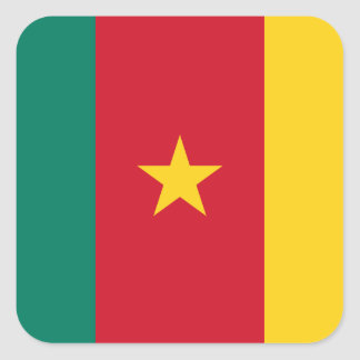 Cameroon Flag Square Sticker
