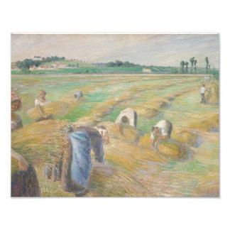Camille Pissarro - The Harvest Photo Art