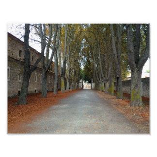 Camino de Santiago Photograph