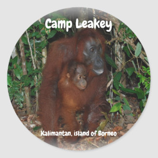 Camp Leakey in Tanjung Puting National Park Borneo Classic Round Sticker