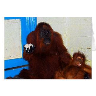 Camp Leakey Orangutan Mother and Baby Card