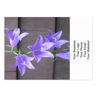 Campanula Garden Plant Flower Blue Business Cards