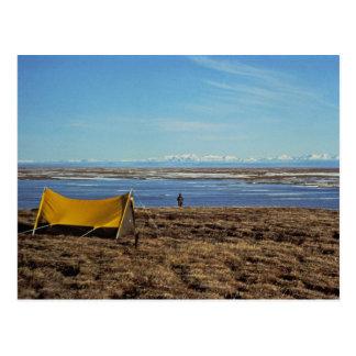 Camping Coastal Plains Postcard