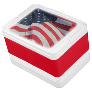 Can Cooler/American Flag Cooler