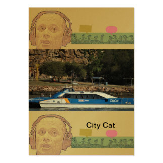 can do card pack of chubby business cards