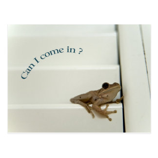 Can I come in ? Postcard
