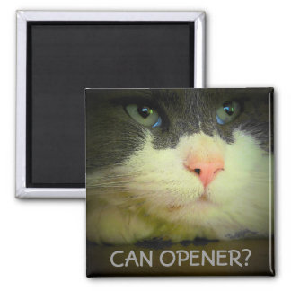 Can Opener? Square Magnet