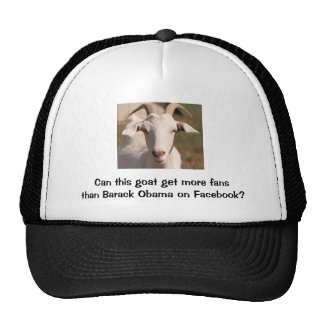Can this Goat get more fans than Barack Obama Trucker Hat