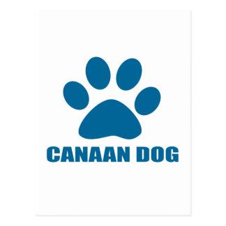 CANAAN DOG DESIGNS POSTCARD