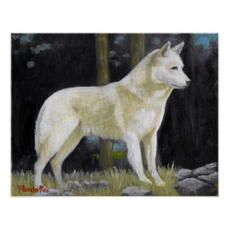 Canaan Dog Portrait Poster Print