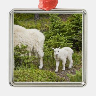 Canada, Alberta, Jasper National Park, Mountain 2 Silver-Colored Square Decoration