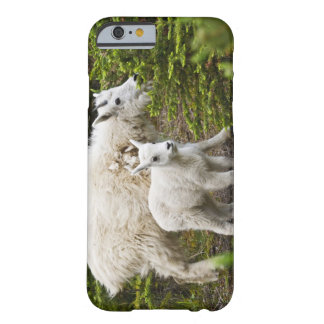 Canada, Alberta, Jasper National Park, Mountain Barely There iPhone 6 Case