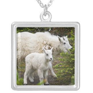 Canada, Alberta, Jasper National Park, Mountain Square Pendant Necklace