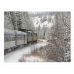 Canada, Alberta. VIA Rail Snow Train between Postcard