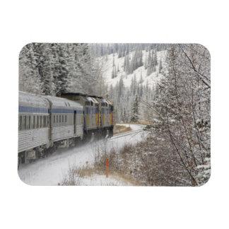 Canada, Alberta. VIA Rail Snow Train between Rectangular Photo Magnet
