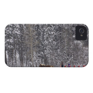 Canada, Banff. Sleigh rides at Martin Stables. iPhone 4 Case