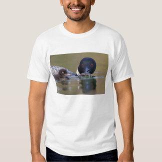 Canada, British Columbia,Common Loon, breeding Tee Shirts