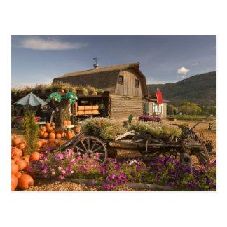 CANADA, British Columbia, Enderby. Log Barn Postcard