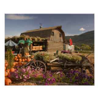 CANADA, British Columbia, Enderby. Log Barn Poster
