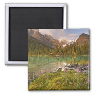 Canada, British Columbia, Yoho National Park. 2 Magnet