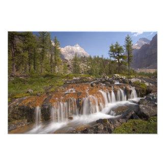 Canada, British Columbia, Yoho National Park. 2 Photo Print