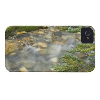 Canada, British Columbia, Yoho National Park. 4 iPhone 4 Case-Mate Cases