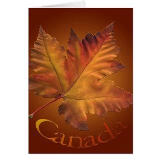 Canada Cards Canada Maple Leaf Greeting Cards