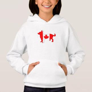 Canada Chihuahua