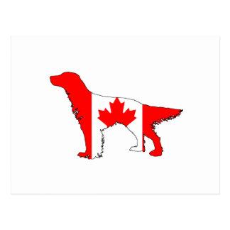 Canada Flag Setter Postcard