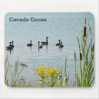 Canada Geese And Cattails Mouse Pads