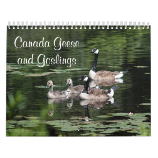 Canada Geese and Goslings Wall Calendars