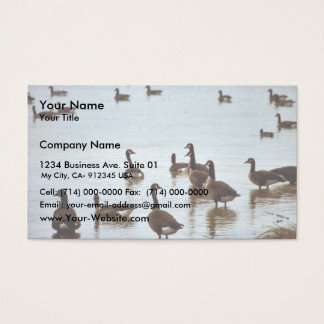 Canada geese at an Ohio wetland area Business Card