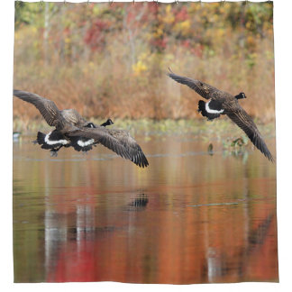 Canada Geese in Flight Shower Curtain