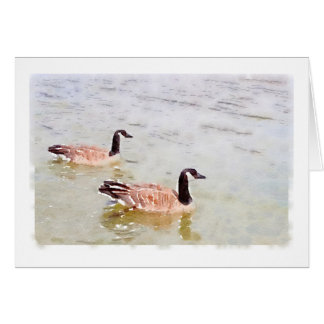 Canada Geese Watercolour Design Notecard