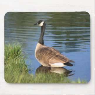 Canada Goose Animal Art Mousepad