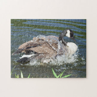 Canada Goose Dripping Wet Jigsaw Puzzle