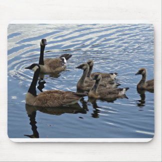 Canada Goose Family Mouse Pad