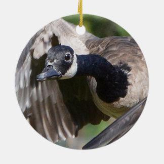 Canada Goose In Flight Ceramic Ornament