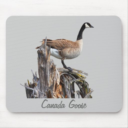 CANADA GOOSE MOUSE PADS