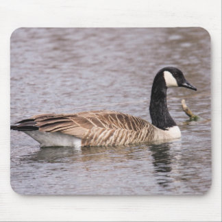 Canada Goose Mouse Pad