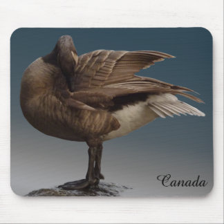 Canada Goose Mousepad Gold Canada Goose Mouse pads
