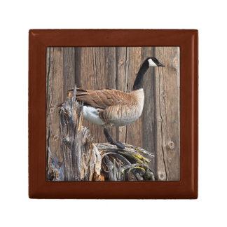 CANADA GOOSE ON BARN BOARD GIFT BOX
