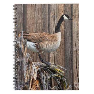 CANADA GOOSE ON BARN BOARD NOTEBOOKS