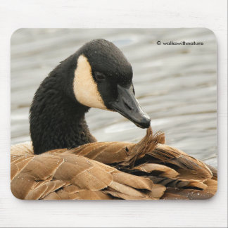 Canada Goose on the Lake Mouse Pad
