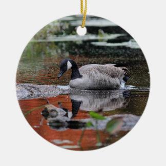 Canada goose reflecting round ceramic decoration