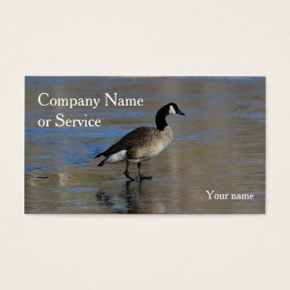 Canada goose walking on ice business card