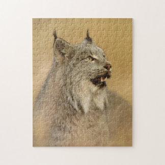 Canada Lynx (Lynx canadensis) - Wild Cats Jigsaw Puzzle