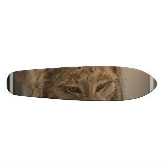 Canada Lynx Custom Skateboard
